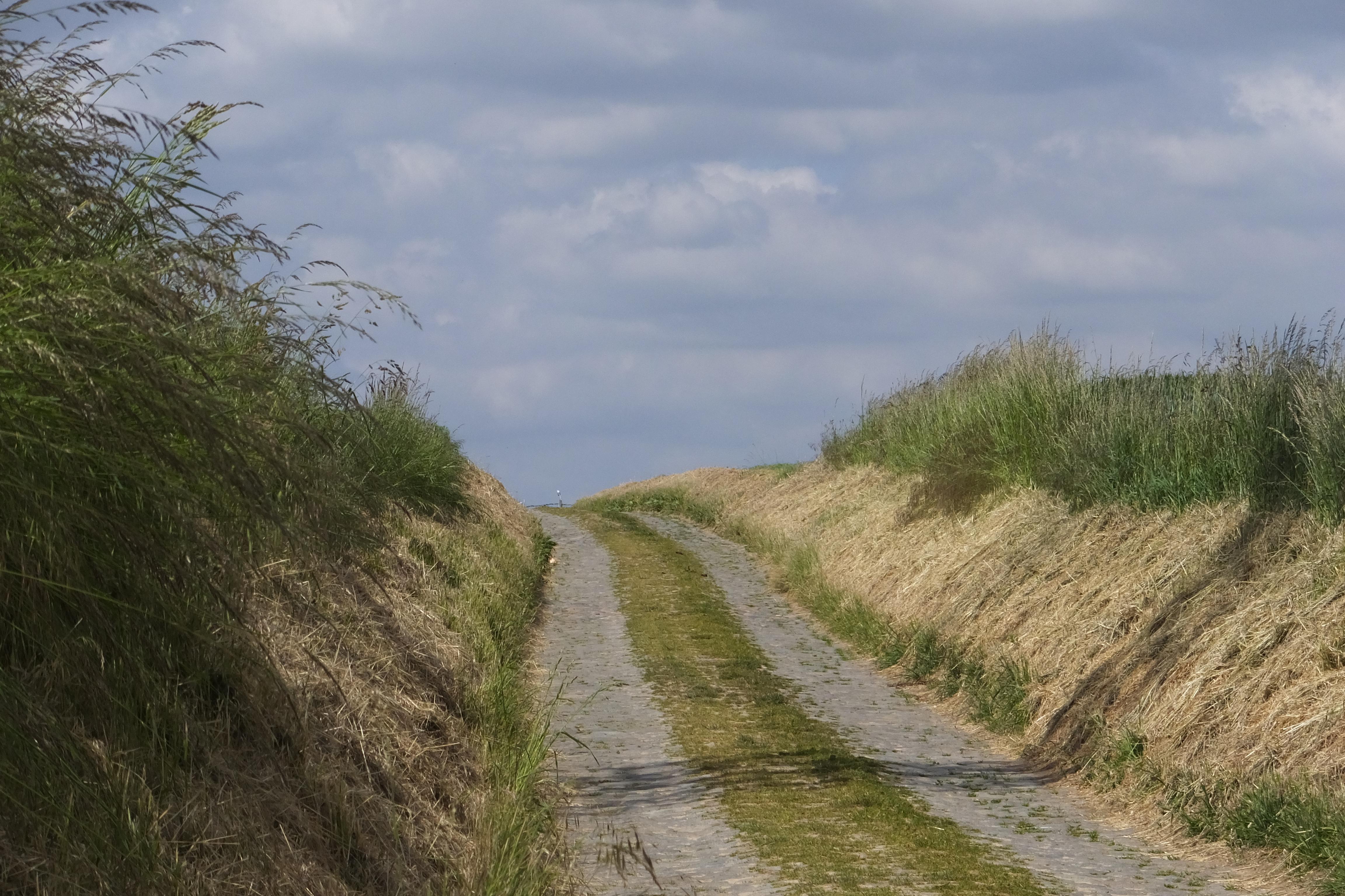 Le véritable voyage n'est pas d'aller vers d'autres paysages, mais d'avoir d'autres yeux.(M.Proust)
